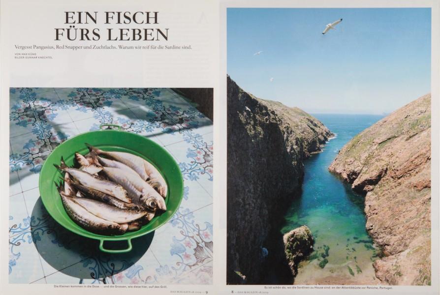 Sardines, Peniche Portugal
