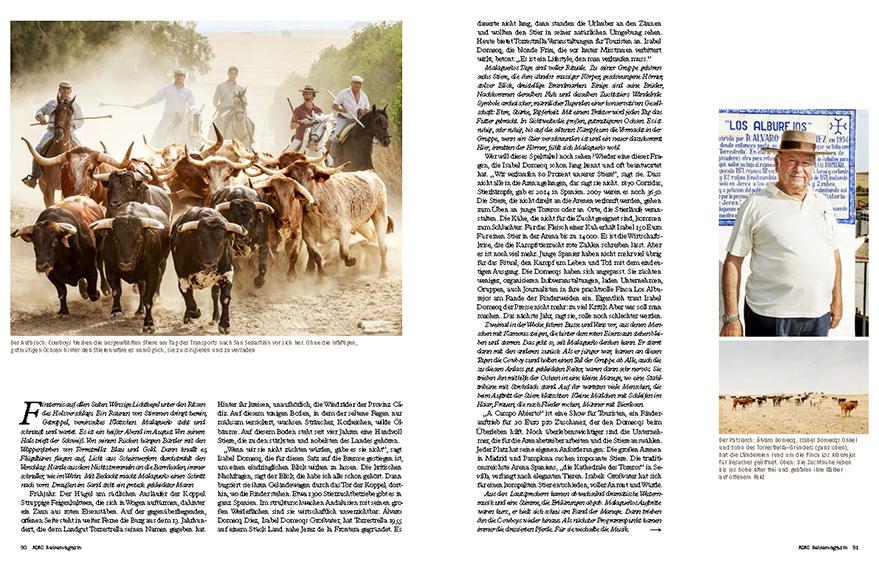 Bull breeding in Andalusia