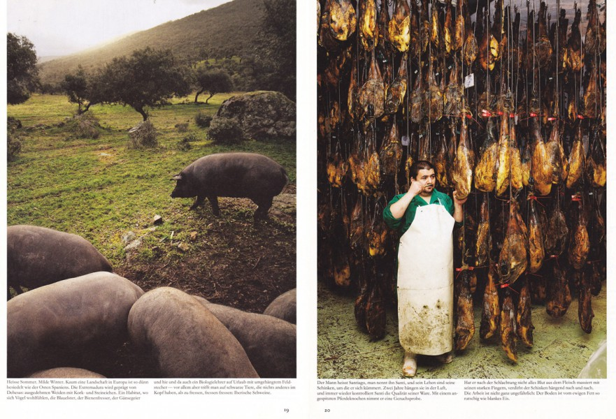 Jason iberico, Das Magazin