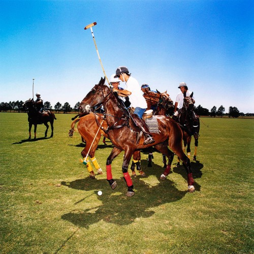 Polo, das Magazin