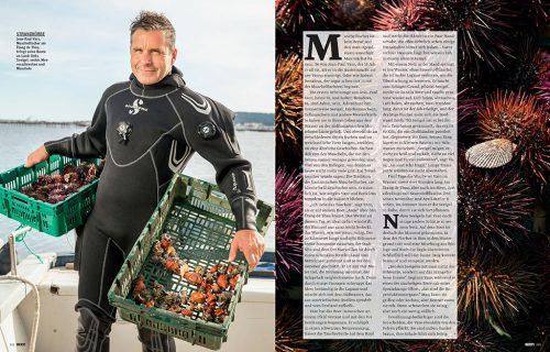 BEEF ! Magazine