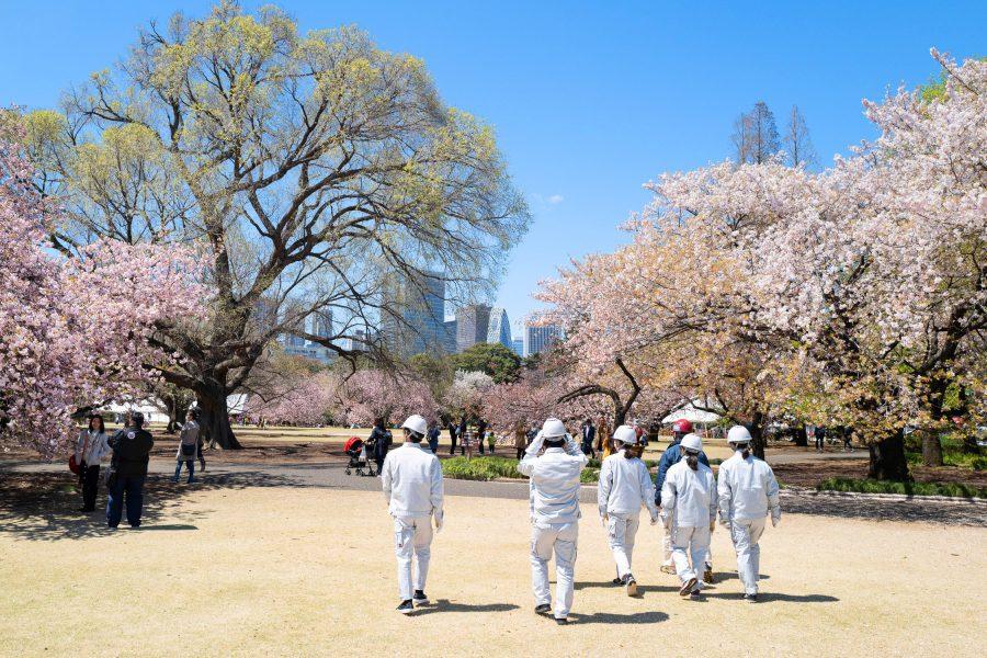 Tokyo Kyoto