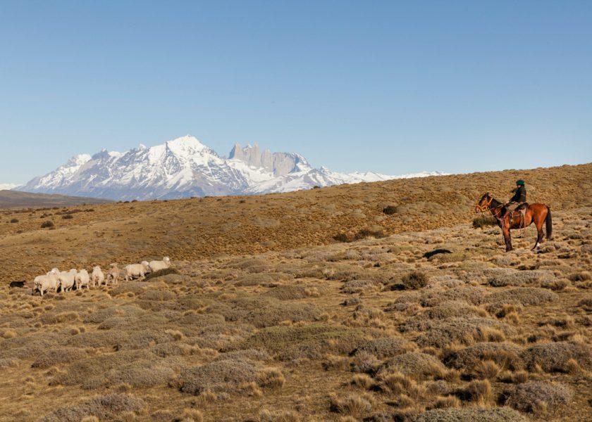 Chile, Gauchos, Beef!